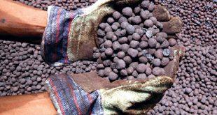 iran iron ore fob price pellet today